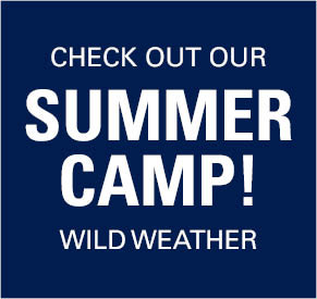 Check out our Summer Camp! Wild Weather.