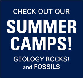 Check out our Summer Camps! Geology Rocks and Fossils.