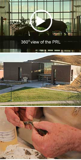 PRL CTA Photo Strip