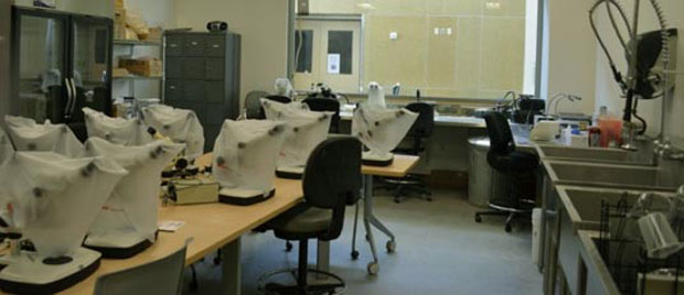Sample Processing Laboratory