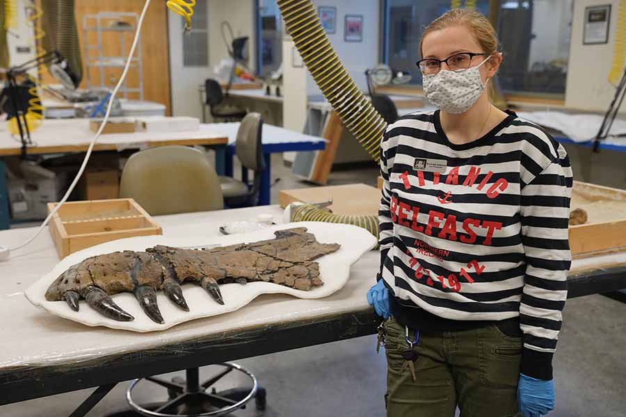 T. Rex Fossil  Getting Facelift at South Dakota Mines